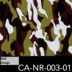 CA-NR-003-01