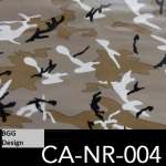 CA-NR-004