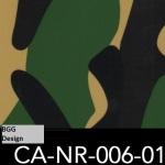 CA-NR-006-01