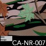CA-NR-007