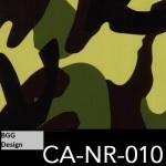 CA-NR-010
