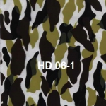 HD-06-1
