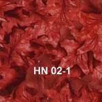 HN-02-1