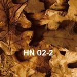 HN-02-2