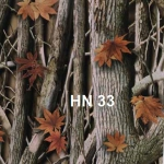 HN-33