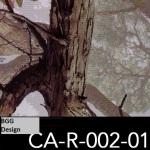 CA-R-002-01