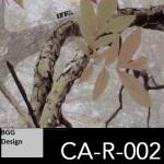 CA-R-002