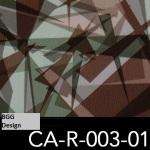 CA-R-003-01