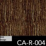 CA-R-004 neu