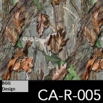 CA-R-005 neu