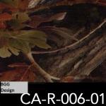 CA-R-006-01