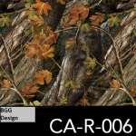 CA-R-006 neu
