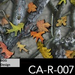 CA-R-007 neu