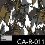 CA-R-011 neu