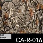 CA-R-016 neu