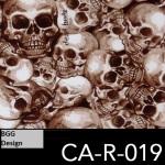 CA-R-019