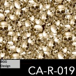 CA-R-019 neu