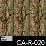 CA-R-020 neu