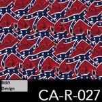 CA-R-027 neu