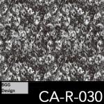 CA-R-030