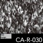 CA-R-030 neu