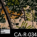 CA-R-034