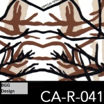CA-R-041